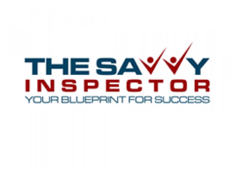 Go Direct to the Public Using Video - The Savvy Inspector