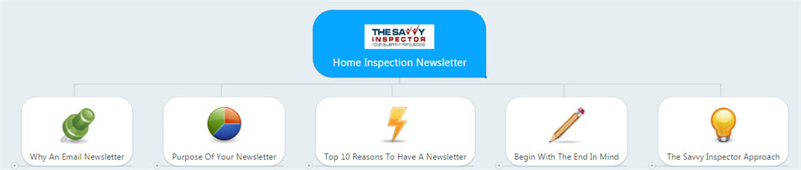 Home Inspection Newsletter - The Savvy Inspector